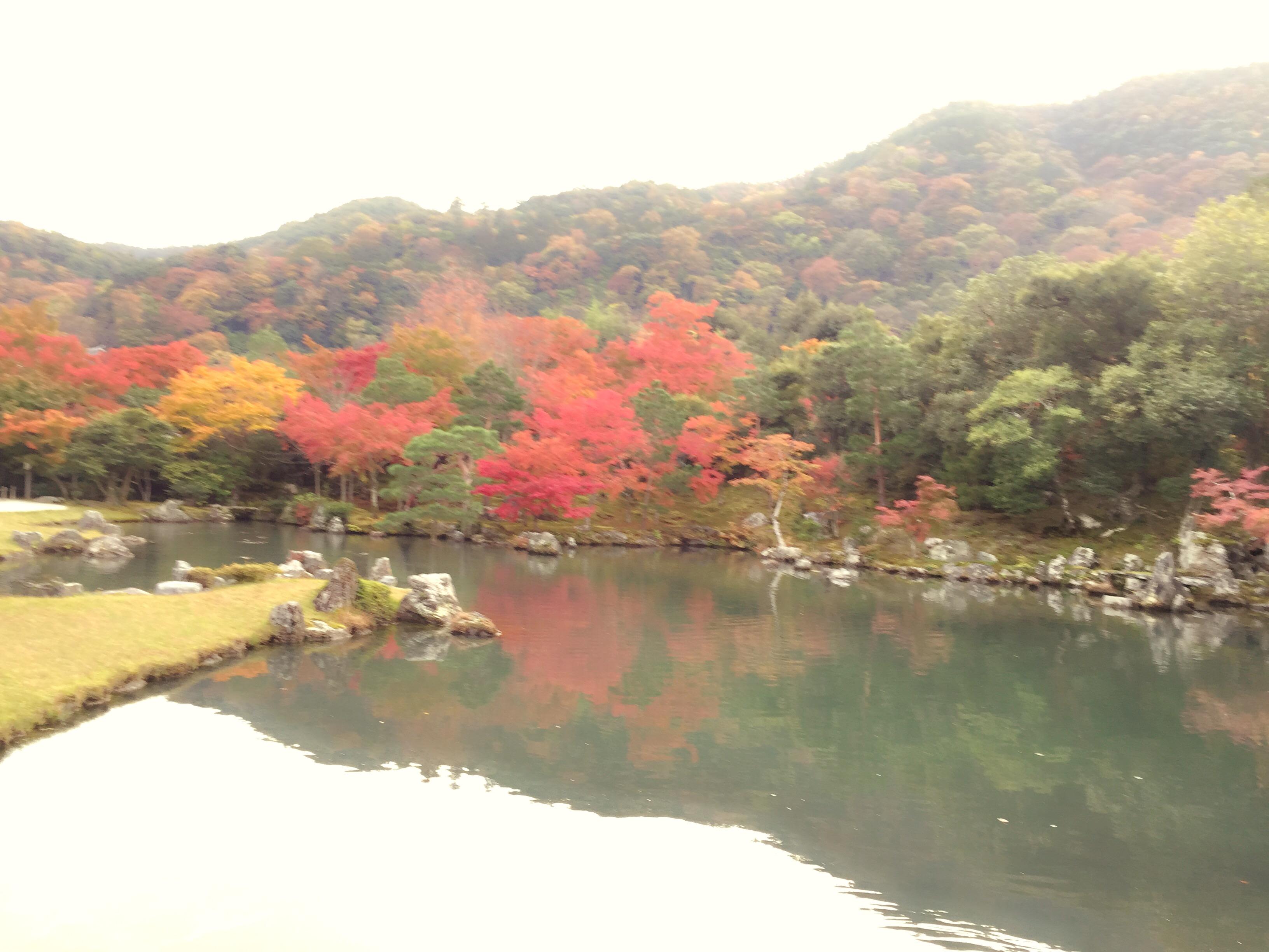 IMG 5435 1 - 京都♡紅葉